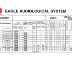 eagle audiological system videomed